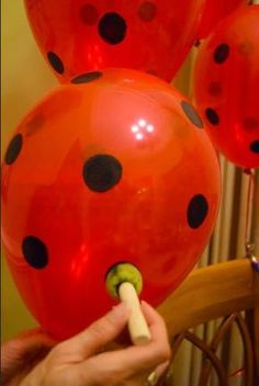 Ladybug balloons More from my site minnie mouse balloon decorations Watermelon Birthday Parties, 2nd Birthday Parties, Fruit Birthday, Fruit Party, Themed Parties, Diy Birthday, Mickey Mouse Parties, Mickey Party, Miraculous Ladybug Party