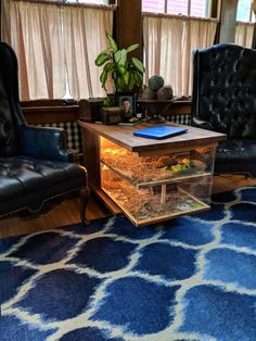 Top 40 Amazing Aquarium Coffee Table Design Ideas To see more Visit👇 Tortoise House, Tortoise Habitat, Tortoise Table, Reptile Habitat, Reptile Room, Tortoise Terrarium, Terrarium Reptile, Aquariums Super, Amazing Aquariums