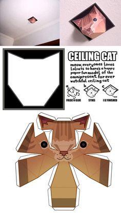 Ceiling cat paper model
