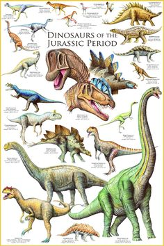 dinosaur photo - Google Search