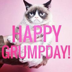 Grumpday yay #GrumpyCat #meme