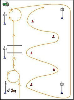 Image result for riding lesson obstacle course ideas