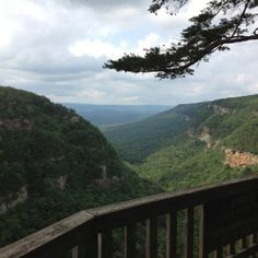 Cloudland Canyon State Park, Georgia  Taken from Friends of Georgia State Parks page