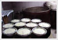 Dieta Dukan: elenco dei formaggi e dei latticini che si possono mangiare a partire dalla fase di attacco (fase 1).