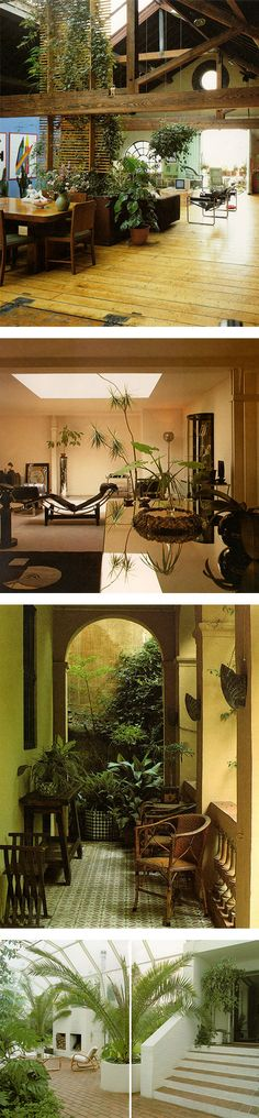 Terence Conran's Decorating With Plants, 1986 via Nuji.com