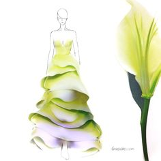 Grace Clao uses flower petals to illustrate her beautiful fashion designs
