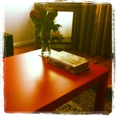 #homedecor #table #red #flowers