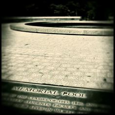 Memorial Pool. #cal #ucberkeley #memorialglade