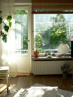 arbitraryinclination: Satu #interior #green #plant #light #window #room