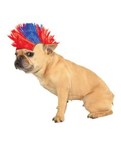 Another great find on #zulily! Red & Blue Mohawk Pet Wig #zulilyfinds