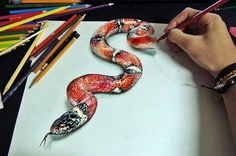 Colored pencil drawing snake
