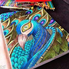 Pavão da @anadeirane enviado via direct .... Quer ver seus coloridos aqui? Utilize #artecomoterapia ou nos envie por direct! .... #pavãoazul #livrodecolorir #livrosinterativos #coloringbook #omundoencantadodascores #umreinodecores #colorir #colorido #colorindooinstagram #passatempopreferido #colorful #coloriage