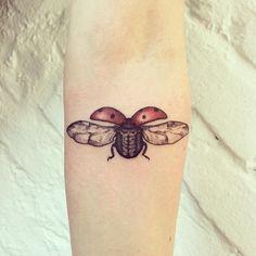 a hagedorn hagen ladybird for anita #tattoo #ladybird #ladybug #insect