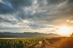 Tuscany Wine Estate Wedding - Jacqui & Matt