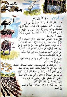 Learn Arabic Online, Arabic Lessons, Old Egypt, Arabic Language, Learning Arabic, Reading Material, Kids Education, Teaching, Activities