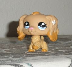 Lps Dog, Lps Pets, Little Pet Shop, Little Pets, Cute Animal Memes, Animal Quotes, Custom Lps, Lps Accessories, Palace Pets