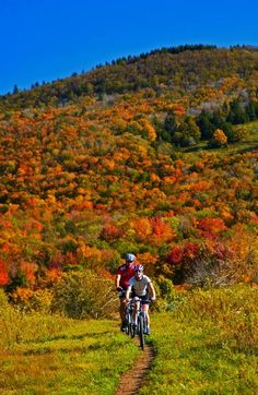 Cannan Valley. Great bike riding trails. West Virginia Department of Commerce Fall Foliage