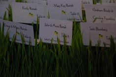 Escort cards in wheat grass