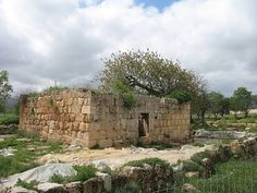 Tel Shiloh  --  In ancient times, Tel Shiloh was the capital of Israel and the center of religious worship for the Jewish people. It held that special status for close to 400 years.
