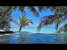 Ocean waves on tropical island Maldives ambience sound. Paradise beach sounds for relaxation, sleeping, meditation & studying. This is ONLY the sound of wave. No Wave, Relaxing Rain Sounds, Relaxing Music, The Sound Of Waves, Sound Of Rain, Ocean Wave Sounds, Ocean Waves, Nature Music, All Nature