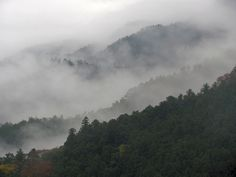 The misty mountains of Shikoku as seen from the trail to Temple #12 (Shosanji).
