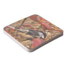 Pink Autumn Foliage with Chickadee Bird Square Paper Coaster