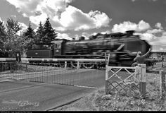 558 Pacific Vapeur Club at Serquigny, France by Jean-Marc Frybourg Trains, France, Club, French, Train