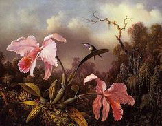 martin johnson heade art   Martin Johnson Heade 1819-1904