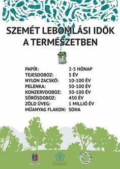 szemét lebomlási ideje a természetben természetvédelem Earth Day Projects, Grammar Lessons, Nature Study, Green Day, Ecology, Better Life, Climate Change, Kids Learning, Teaching