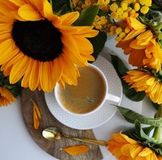 Need this ASAP ☕️🌻 - Who else is powering through today with a cup of joe? ( or a PSL if that's your thing 😜 )⁠⠀ . Good Morning Coffee, Coffee Cozy, Coffee Time, Beautiful Flower Arrangements, Coffee Photography, Flower Aesthetic, Coffee And Books, Fall Flowers, Pumpkin Spice