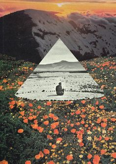 Argentine collage artist Mariano Peccinetti, aka Trasvorder, opens the portal to another dimension by connecting the infinite of the cosmos to human life.