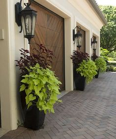 Pamela Crawford, the guru of container gardening, shares some of her favorite planted pottery from her 5 books on container gardening. Outdoor Planters, Outdoor Landscaping, Front Yard Landscaping, Outdoor Gardens, Front Porch Planters, Landscaping Ideas, House Landscape, Garden Landscape Design, House Front