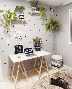 home decor cheap Home Office Decor, Diy Home Decor, Office Desk, Study Room Decor, House Plants Decor, Home Room Design, Workspace Inspiration, Aesthetic Bedroom, Home Decor Furniture