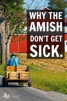 I try to live my life very similar to the way the Amish do, I just didn't realize it until I stumbled upon a great book about them. Now I am fascinated.