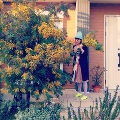 garden/庭…などのインテリア実例 - 2014-03-21 06:44:10 Garden Trees, Garden Plants, Green Garden, Interior Design Living Room, Gardening Tips, Floral Design, Herbs, Exterior, Landscape