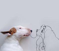 Terrier + Desenhos