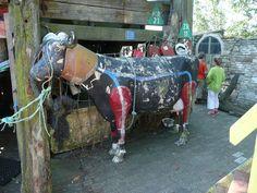 Scuba-cow at the Wrakkenmuseum