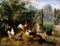 gallo y gallina - Buscar con Google