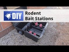 Rats and mice are a guest no one wants in their home or business. In this video, we will give you an overview on how to use a rodent bait station to control and get rid of the rats and mice. For more products and information on identifying, getting rid of and preventing rodent infestations, go to http://www.domyownpestcontrol.com/rodents-c-21.html