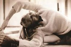 Image result for daphne selfe exercise
