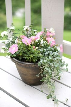 Tips for arranging garden containers in 10 minutes - easy gardening tips - summer decor