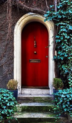 Front Door Paint Colors - Want a quick makeover? Paint your front door a different color. Here a pretty front door color ideas to improve your home's curb appeal and add more style! Cool Doors, Unique Doors, Entrance Doors, Doorway, Doors Galore, Best Front Doors, Porte Cochere, When One Door Closes, Windows And Doors