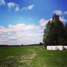 Jännä miten kesä tuo uutta hohtoa tuttuunkin maisemaan  Ordinary Finnish countryside in July: endless fields and blue sky  . . . . . . . . . . . .  #thisisfinland #visitfinland #discoverfinland #bestoffinland #pellot #pelto #taivas #sinitaivas #paalit #field #fields #countryside #sky #skyporn #cloudporn #clearsky #bluesky #weather #summerweather #sunshine #clouds #cloudporn #horizon #photooftheday #instagood #primeshots #ic_landscapes Countryside, Tutu, Fields, Golf Courses, Landscapes, Sunshine, Weather, Clouds, Sky
