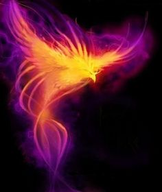 Psychic Jade 079 806 0700: Delta Aquariids: Phoenix Rises from Ashes