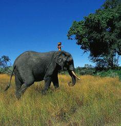 Tipi Degré, een kind uit afrika.  Mijn Inspiratie: Meisje groeit op tussen wilde dieren in Afrika - Nieuws - Droomplekken