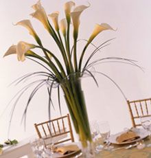 Calla lily centerpiece calla lily centerpieces lily centerpieces calla lily centerpiece calla lily centerpieces lily centerpieces and calla lilies junglespirit Image collections