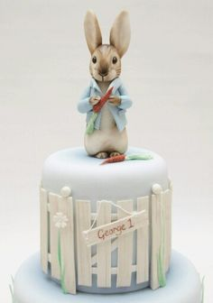 Peter Rabbit Cake. (It's actually a larger cake but look how sweet just this bit is!)