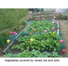 Great idea for allotment sticks