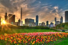 """Chicago Spring"" by Jeff Lewis, via 500px."