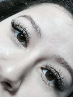 Cat eyes look from silk mink eyelash extensions . Come with our off all new services for our new soft opening special in Newport Beach Permanent Eyelash Extensions, Eyelash Extensions Styles, Hair Curlers Rollers, Eyelash Sets, Makeup Brush Cleaner, Eyebrows On Fleek, How To Clean Makeup Brushes, Mink Eyelashes, Cat Eyes